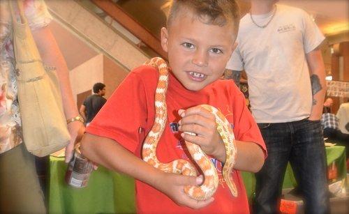 Jaiden Polsky, 6, with a corn snake. Photo Weatherston