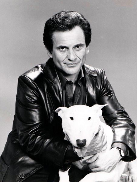 """IN NEW NBC-TV SERIES -- Joe Pesci as Rocky Nelson and Hunk is his dog in 'Half-Nelson,' a new NBC-TV series about an ex-New York cop who moves to Hollywood to pursue an acting career. The pilot will be telecast on NBC Sunday Night at the Movies March 24 (9-11 p.m. NYT; closed-captioned)."""