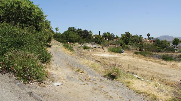 A dispute with a neighbor over trimming bushes along the easement to Vilkin's vacant Encinitas property precipitated the shooting.