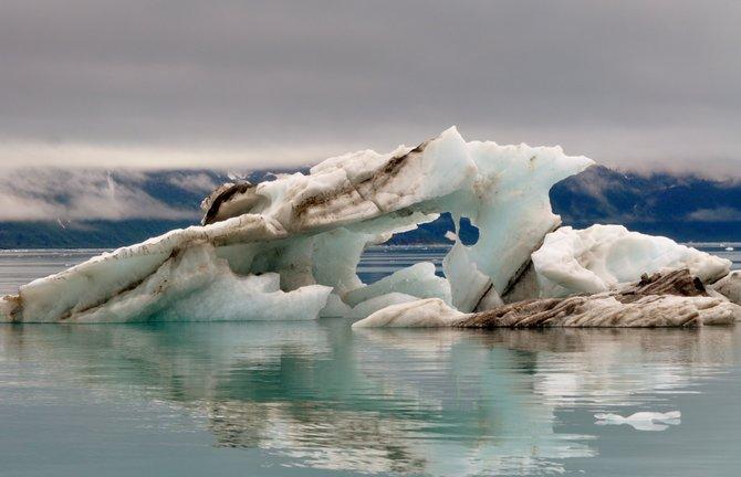 Bergy Bits in Alaska
