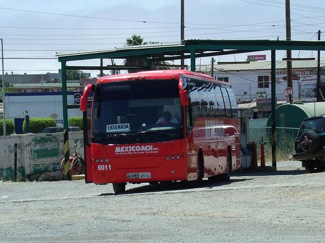 Not all buses say ABC; some will be labeled Mexicoach.