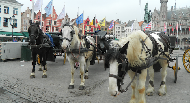 Carriage horses wait for customers in Bruges's Markt square.