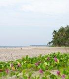 Ngwe Saung Beach, Myanmar (Burma)