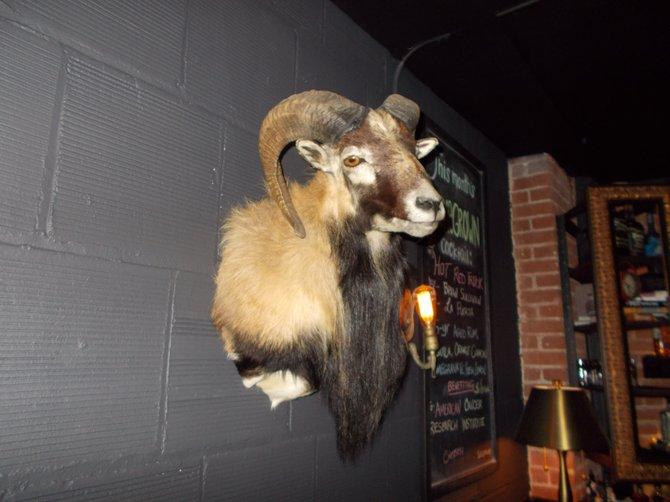 Rhexnor the ram