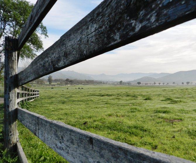 Horse ranch in Bonsall.
