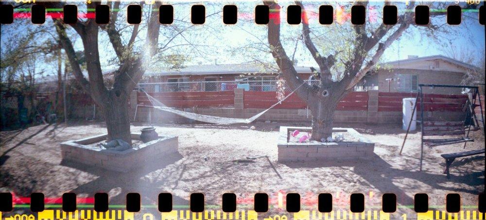 Analog photograph by Lisa Mendez