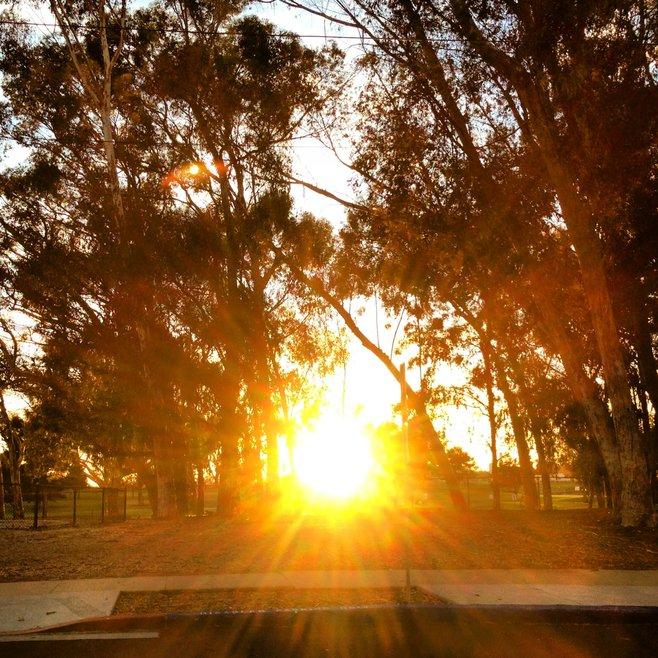 Golden Hill photo