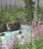 Marble Canyon entrance at Kootenay National Park