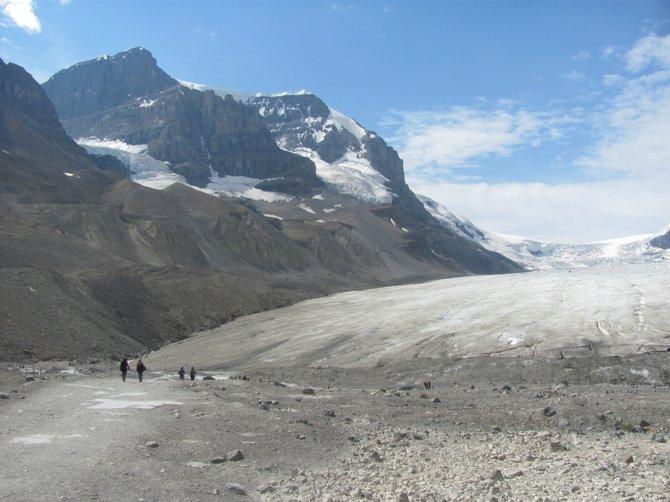 Hiking Jasper's Columbia Icefields.