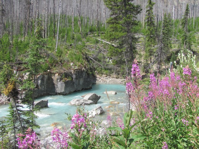 Marble Canyon entrance at Kootenay National Park.