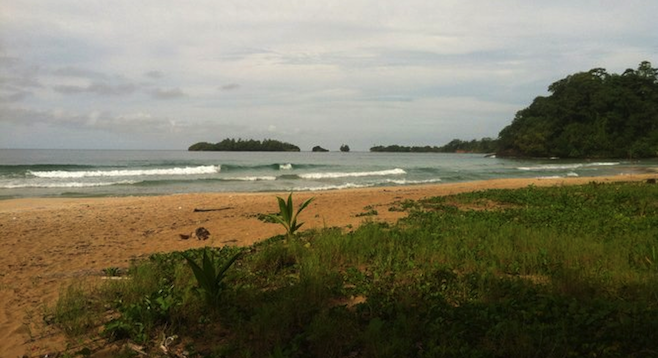 (Another) deserted beach in the islands of Bocas del Toro.