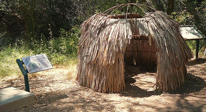 A replica of a Kumeyaay 'ewaa invites investigation along the Oak Grove Loop.