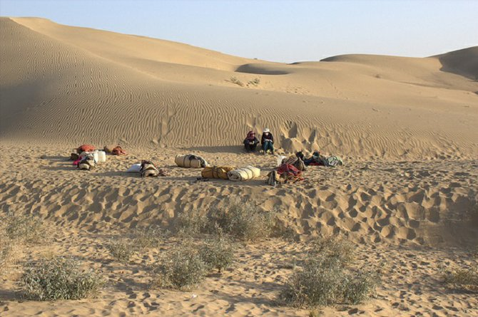 One of the camps in the Thar Desert