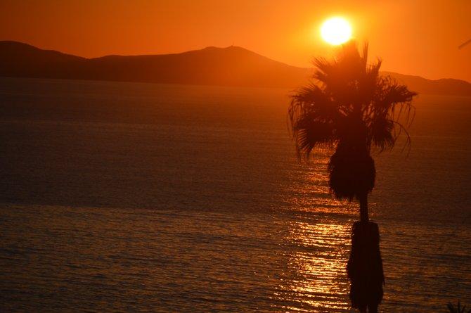 Baja Sunset 10-17-2013