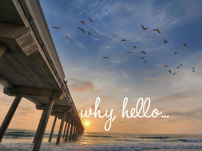 Why, Hello. Photo by Frank McKenna