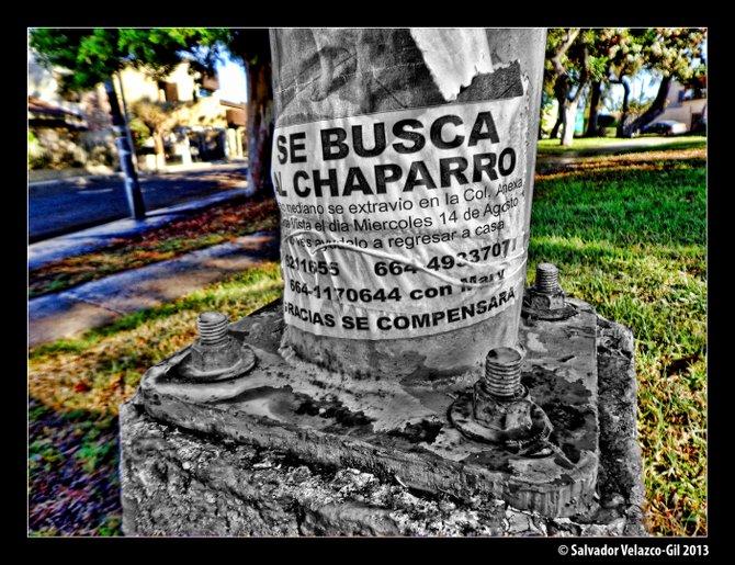 Neighborhood Photos TIJUANA,BAJA CALIFORNIA Wanted / Se busca