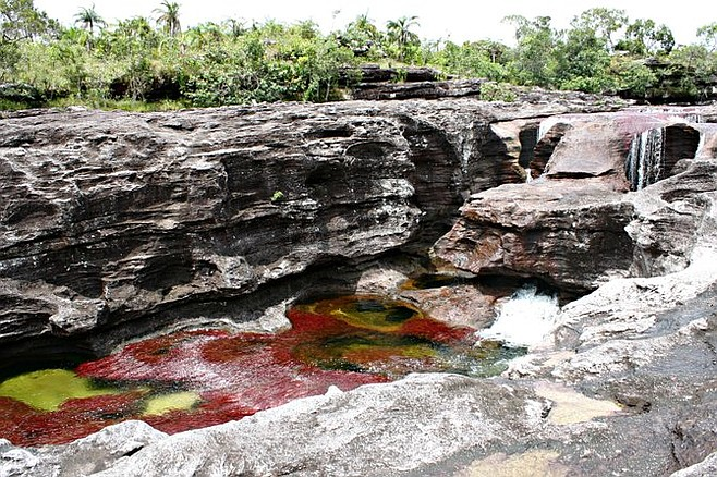 Naturally formed pools in Caño Cristales.
