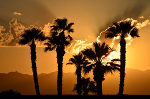 The Coachella Valley and it's beautiful sunsets!