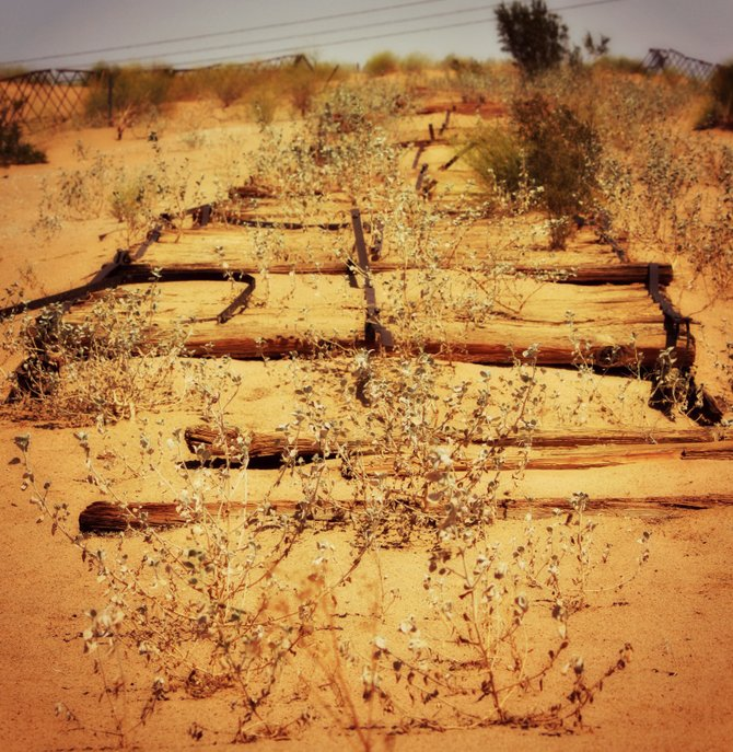 """The Old Plank road is being reclaimed by the Southern California desert.  It can be viewed just off the I-8, 30 miles East of El Centro, CA. """"it's a Vilma!"""""""