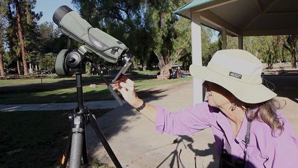 Karen Straus videotaping wild parrots with her iPhone attached to a powerful 1600x scope