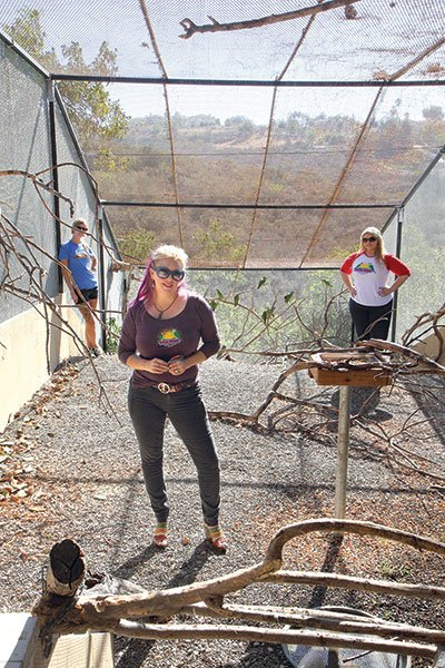 Brooke Durham and her staff inside SoCal Parrot's state-of-the-art flight cage in Jamul