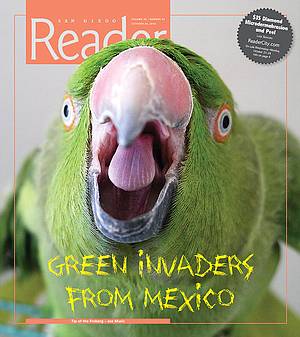 Did San Diego parrots come from Mexico or Pasadena? | San Diego Reader