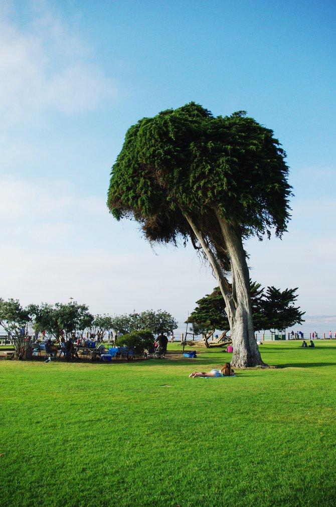 La Holla Cove Park, San Diego