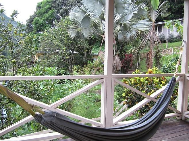 ...and hammock.