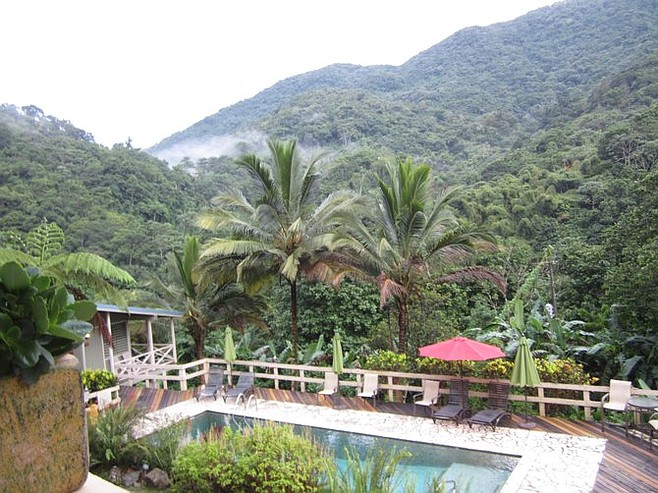 Casa Grande swimming pool, surrounding jungle...