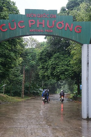 It was almost like entering Jurassic Park! After spending most of the day on our motorbikes, we were relieved to finally make it to Cuc Phuong.