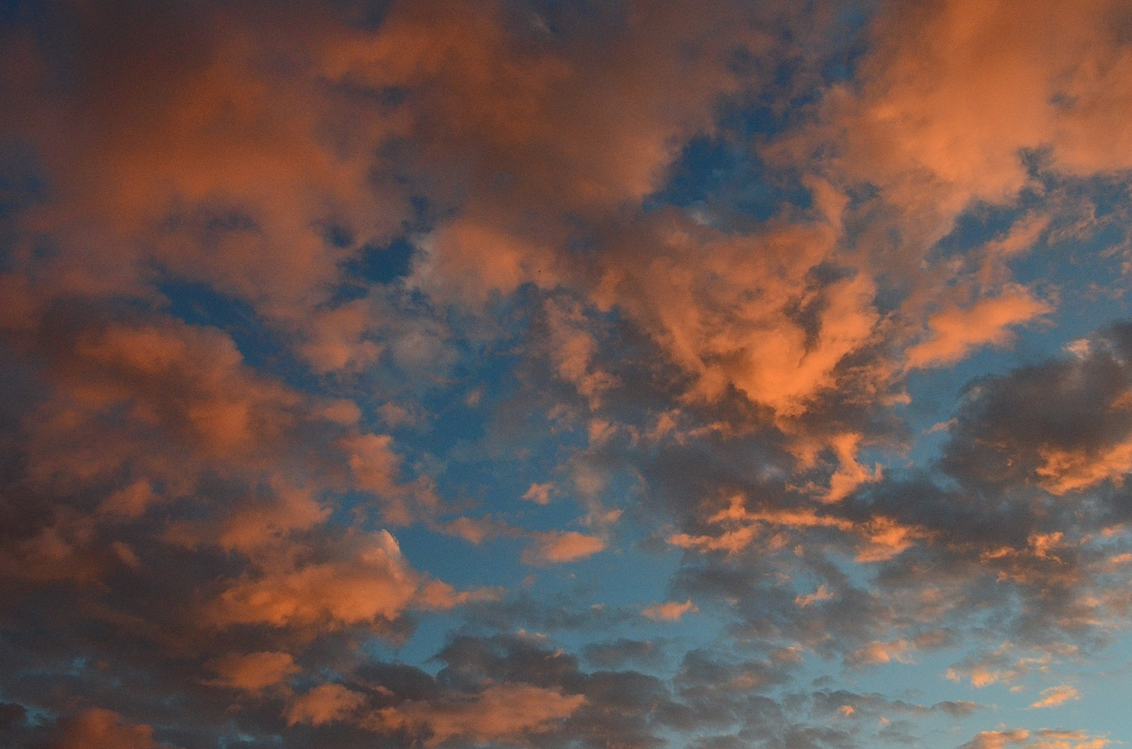 Clouds at sunset.  San Dieguito Lagoon.  Del Mar, California.  November 24th, 2013.