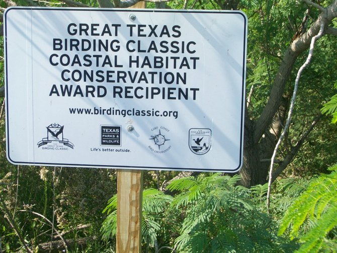 A bird-lover's heaven exists along the southern Texas coastal regions.