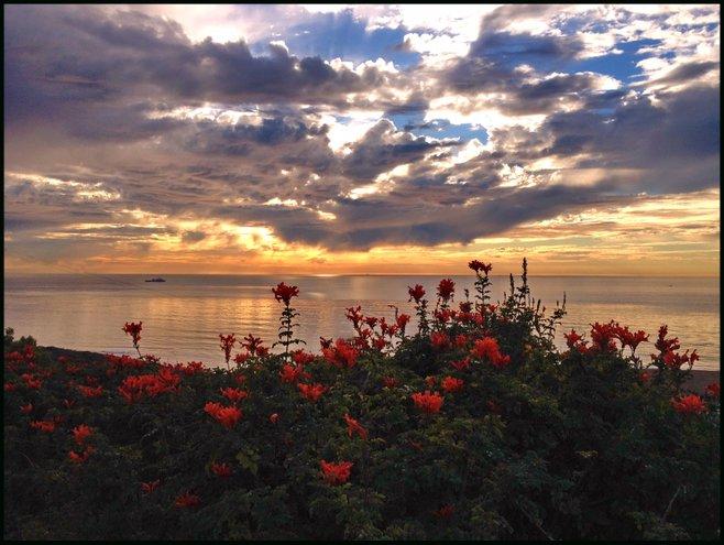 Point Loma Nazarene photo