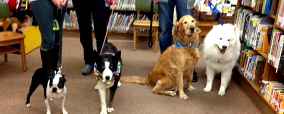 Dogs at the library