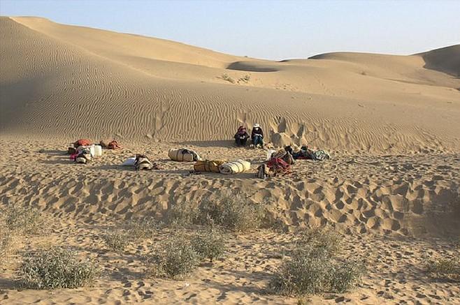 Thar Desert camping.