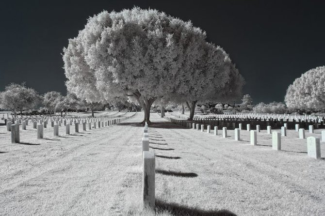 Ft. Rosecrans National Cemetery by Dwayne Andrejczuk