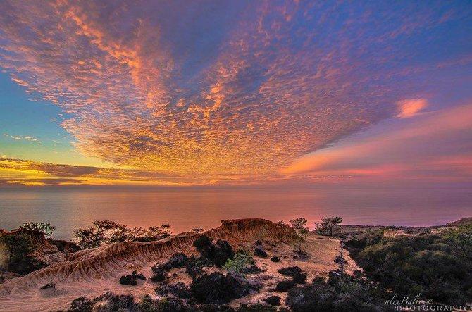 Broken Hill Trail at Torrey Pines State Reserve by Alex Baltov