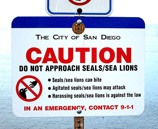 This sign posted at the new gate to the previously fenced-off bluffs above the Cove that sea lions frequent. Many swimmers hope that the presence of people on the bluffs will reduce the sea lion population.