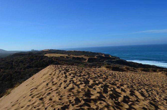 Sand dunes at Montana de Oro State Park, San Luis Obispo, California.  December 2013.