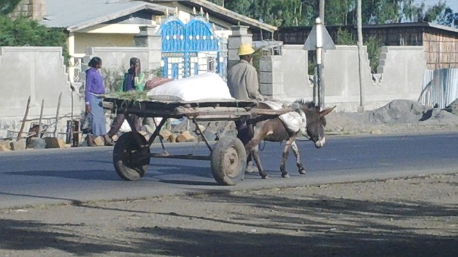 Transport by horse (or donkey) and cart is still common here.