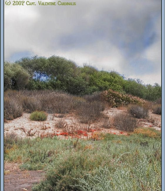 Tijuana Estuary NP, Imperial Beach, CA
