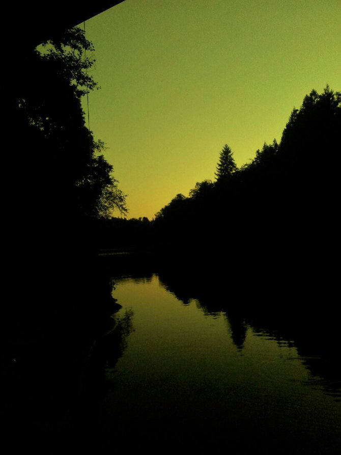 Trees on the calm Kalama River, Washington state.