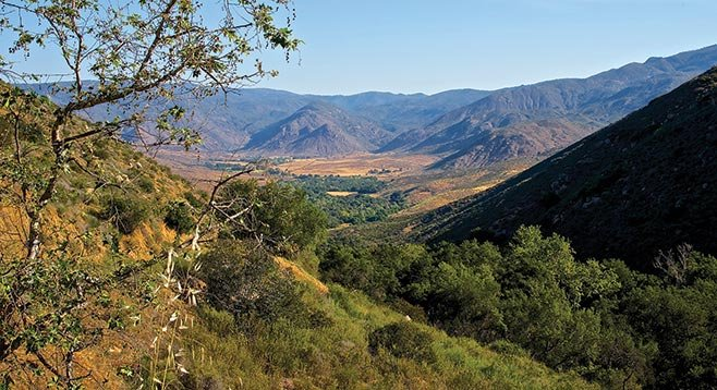 The trails leads in and out of riparian forests hugging Santa Ysabel creek and its tributaries.