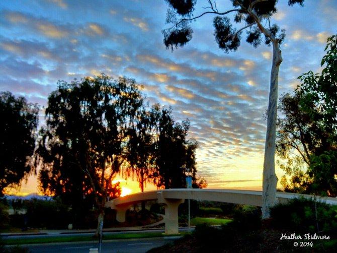 Balboa Park Sunrise