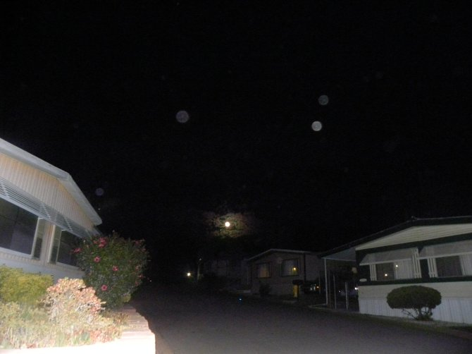 Orbs on the night of the blue moon.