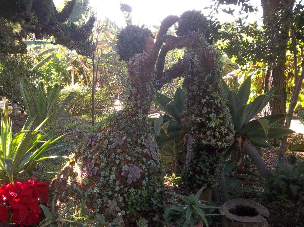 SDBG's Mexican Garden.