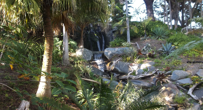 Waterfall behind tropical foliage in the San Diego Botanic Garden.