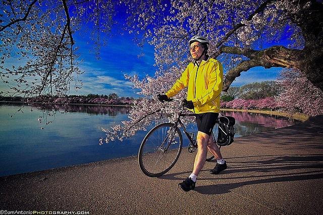 Biker along the Tidal Basin.