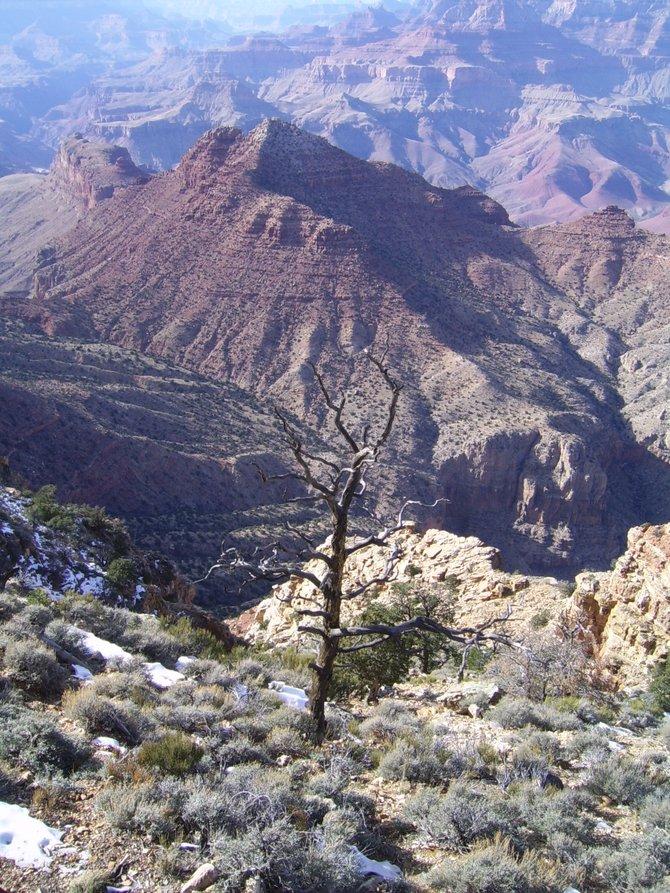 Gran Canyon Feb 2014