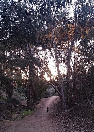 Running down the trail, First Street Bridge above.
